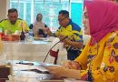 Menjadi Special Guest di Webinar Nasional, Widya Sampaikan Testimoni Tentang Penanganan Stunting Di Maluku